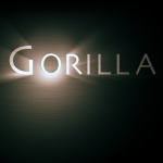 Gorilla Films Dominate Music Industry Videos