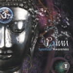 Painn Spiritual Awareness EP