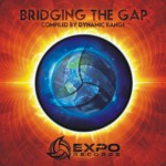 Various Artists – Bridging the Gap – Expo Records