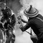 MTN BUSHFIRE 2015 the first acts announced