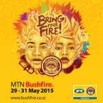 MTN Bushfire 2015 full line-up announced