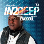 In2Deep Vol. 2 mixed by DJ Enosoul on House Afrika