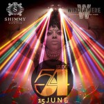 The Studio 54 Themed Party at Shimmy Beach Club