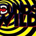 SoundsWild announces headliners Crystal Castles and Flux Pavilion