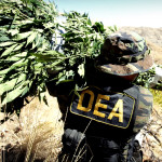 American war on drugs has 'harmed public health'