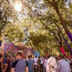 Good news for Outdoor Festivals in Western Cape