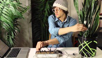 MIDI Sprout converts data from plants into MIDI