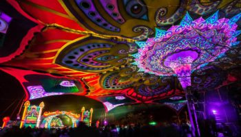 First Earthdance Cape Town Headliner announced for 2017 event