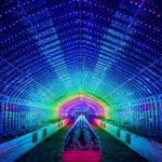 This Digital Vegetables art installation will light up your view on veggies