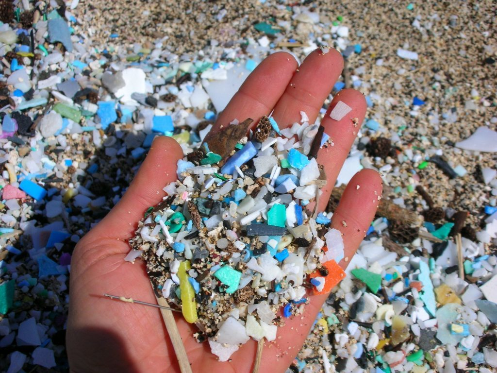 Glitter pollutes oceans