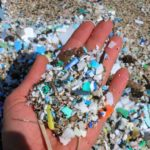 Glitter pollutes oceans say scientists