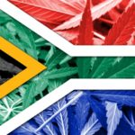 Medical Cannabis dispensary opens in Durban